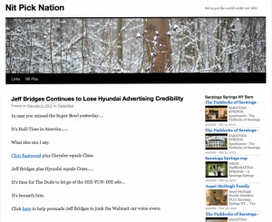 nitpick-nation-home-page